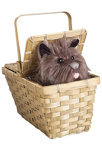 Deluxe Toto-in-a-Basket